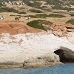 Конная прогулка по берегу моря